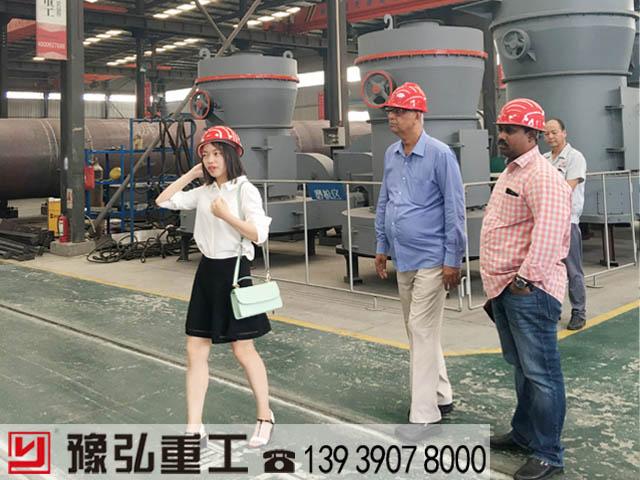 国外客户参观雷蒙磨粉机现场图